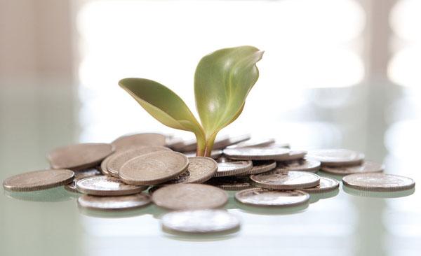 О финансовой грамотности или Как разумно тратить деньги