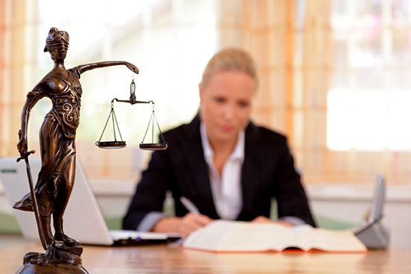 Светлана Приймак - успешный юрист Киева